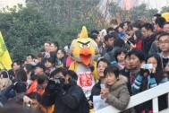Even an Angry Bird enjoys the race.