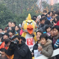 Even an Angry Bird enjoys the race.